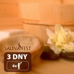 3 days at Saunafest